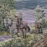 Oehlenschläger Bauer pflügt das Feld 2