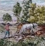 Oehlenschläger Bauer pflügt das Feld 1